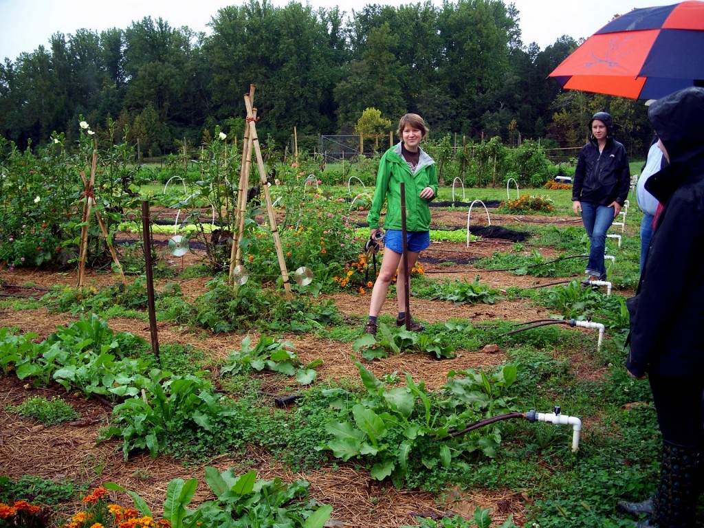 Students explore the Morven Kitchen Garden, which is often used as an outdoor classroom. Photo from: http://uvagreendining.blogspot.com/2012/01/morven-summer-institute-2012.html.