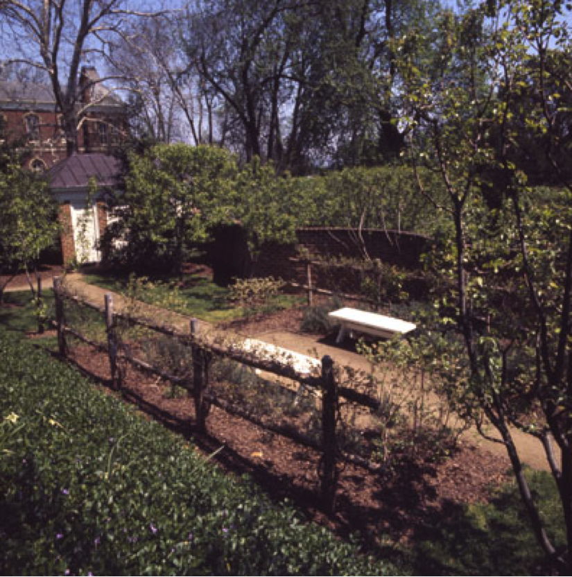 Pavilion II features a grape arbor and is similar to some of the gardens present at Monticello. Photo from: Virginia Historical Society.